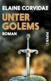 Unter Golems (eBook, ePUB)