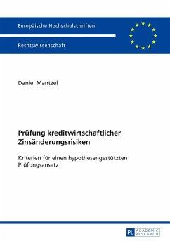 Prüfung kreditwirtschaftlicher Zinsänderungsrisiken - Mantzel, Daniel