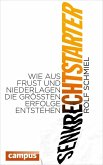 Senkrechtstarter (eBook, ePUB)