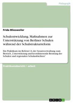 Schulentwicklung. Maßnahmen zur Unterstützung von Berliner Schulen während der Schulstrukturreform
