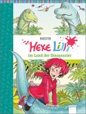 Hexe Lilli im Land der Dinosaurier / Hexe Lilli Bd.14