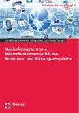 Medienkonvergenz und Medienkomplementarität aus Rezeptions- und Wirkungsperspektive