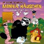 Warum stinkt der Iltis?, 1 Audio-CD / Die kleine Schnecke, Monika Häuschen, Audio-CDs Nr.40