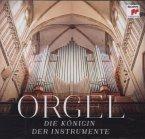 Orgel-Die Königin Der Instrumente