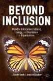 Beyond Inclusion (eBook, PDF)