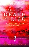 Between Death and Life – Conversations with a Spirit (eBook, ePUB)