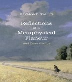 Reflections of a Metaphysical Flaneur (eBook, PDF)