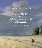 Reflections of a Metaphysical Flaneur (eBook, ePUB)