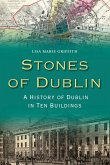 Stones of Dublin (eBook, ePUB)