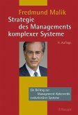 Strategie des Managements komplexer Systeme