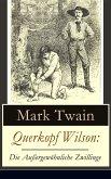 Querkopf Wilson: Die Außergewöhnliche Zwillinge (eBook, ePUB)