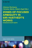 Zones of Focused Ambiguity in Siri Hustvedt's Works