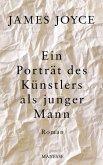 Ein Porträt des Künstlers als junger Mann (eBook, ePUB)