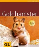 Goldhamster (Mängelexemplar)