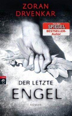 Der letzte Engel / Der letzte Engel Bd.1 (Mänge...