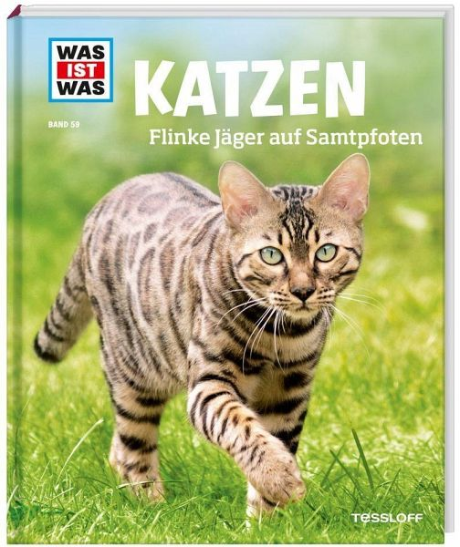 katzen was ist was von jutta aurahs buch b. Black Bedroom Furniture Sets. Home Design Ideas