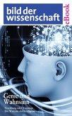 Genie und Wahnsinn (eBook, ePUB)