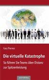 Die virtuelle Katastrophe (eBook, ePUB)