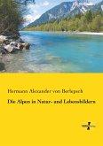Die Alpen in Natur- und Lebensbildern