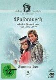 Waldrausch - Die Ganghofer Verfilmungen, Sammelbox 5 (3 Discs)