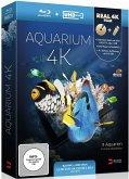 Aquarium 4k UHD Edition
