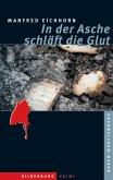 In der Asche schläft die Glut (eBook, ePUB)