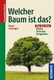 Welcher Baum ist das? (eBook, PDF)