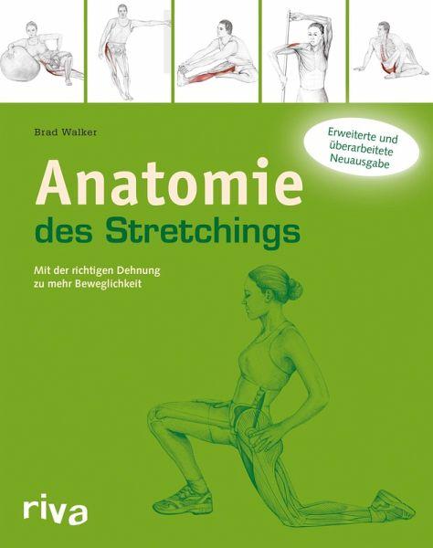 Anatomie Des Stretchings Ebook Pdf Von Brad Walker Portofrei