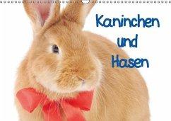 Kaninchen und Hasen (Wandkalender immerwährend DIN A3 quer)