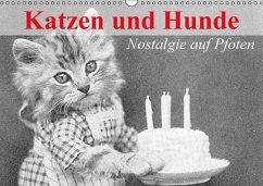 Katzen und Hunde - Nostalgie auf Pfoten (Wandkalender immerwährend DIN A3 quer)