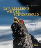 NATURERLEBNIS WILDER SCHWARZWALD