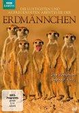 Die lustigsten und aufregendsten Abenteuer der Erdmännchen