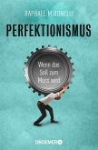 Perfektionismus (eBook, ePUB)