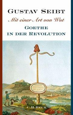 Mit einer Art von Wut (eBook, ePUB) - Seibt, Gustav