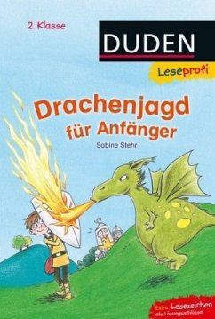 Leseprofi - Drachenjagd für Anfänger, 2. Klasse - Stehr, Sabine
