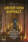 Unter dem Asphalt (eBook, ePUB)