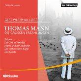 Die großen Erzählungen (MP3-Download)