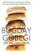 Bugday Göbegi