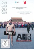 Ai Weiwei - The Fake Case