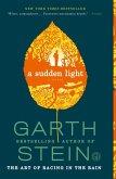 A Sudden Light (eBook, ePUB)