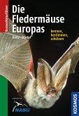 Die Fledermäuse Europas kennen, bestimmen, schützen (eBook, PDF)