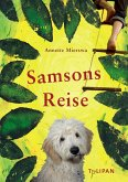 Samsons Reise (eBook, ePUB)