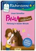 Rettung in letzter Minute / Paula auf dem Ponyhof Bd.1