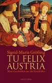 Tu felix Austria (eBook, ePUB)