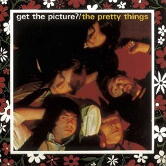 Get The Picture? (Limited Edition) - Pretty Things,The