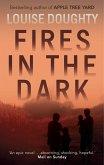Fires in the Dark (eBook, ePUB)
