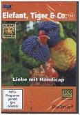 Elefant, Tiger & Co. - Liebe mit Handicap, 1 DVD