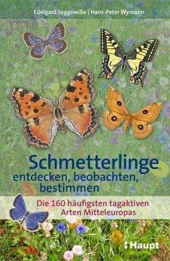 Schmetterlinge entdecken, beobachten, bestimmen - Seggewiße, Edelgard