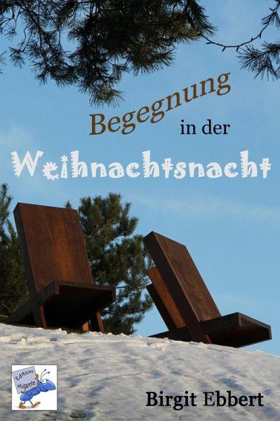 Begegnung in der Weihnachtsnacht (eBook, ePUB) - Ebbert, Birgit