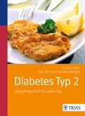 Diabetes Typ 2 (eBook, PDF)